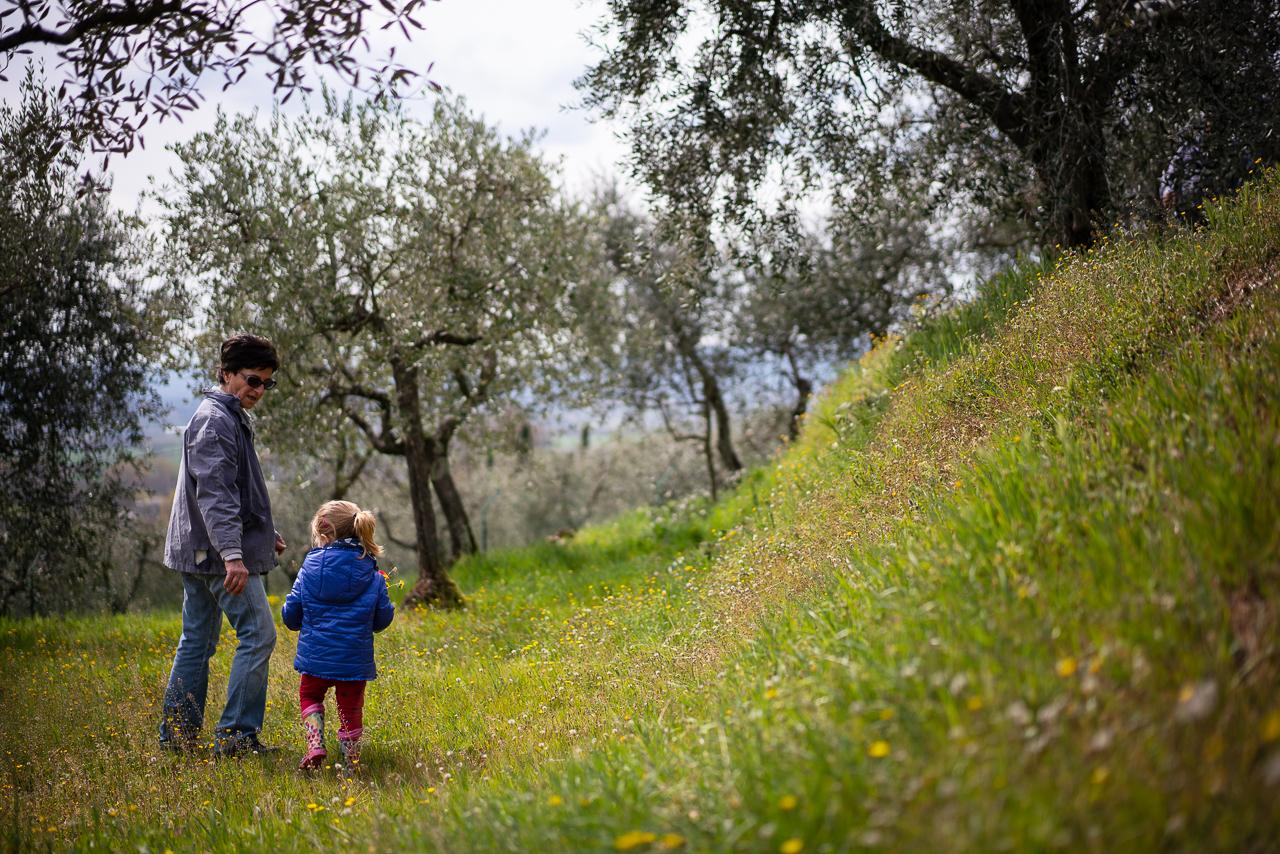 Protetto: Chiara alla potatura degli olivi in Manziana